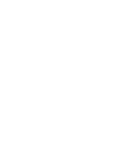 Icon Fußball Junioren